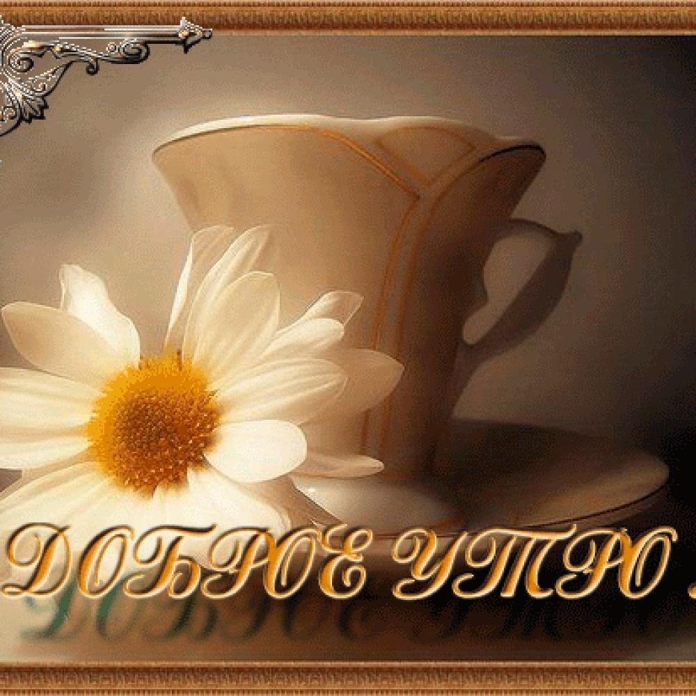 Картинки с добрым утром с надписью для любимой, картинки