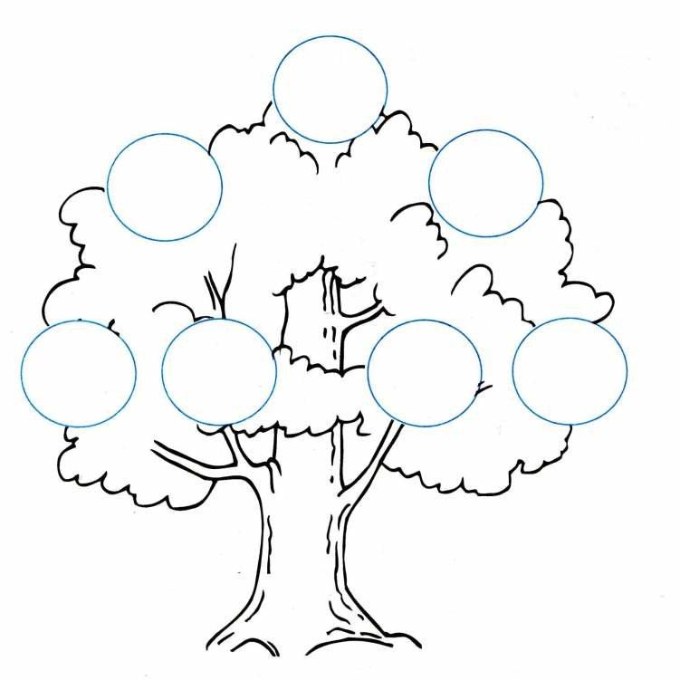 Генеалогическое дерево картинка раскраска