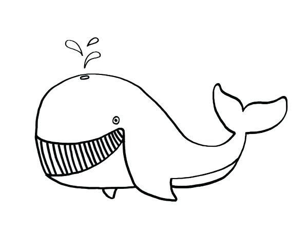картинка кит черно белая раскраска монтанер популярный