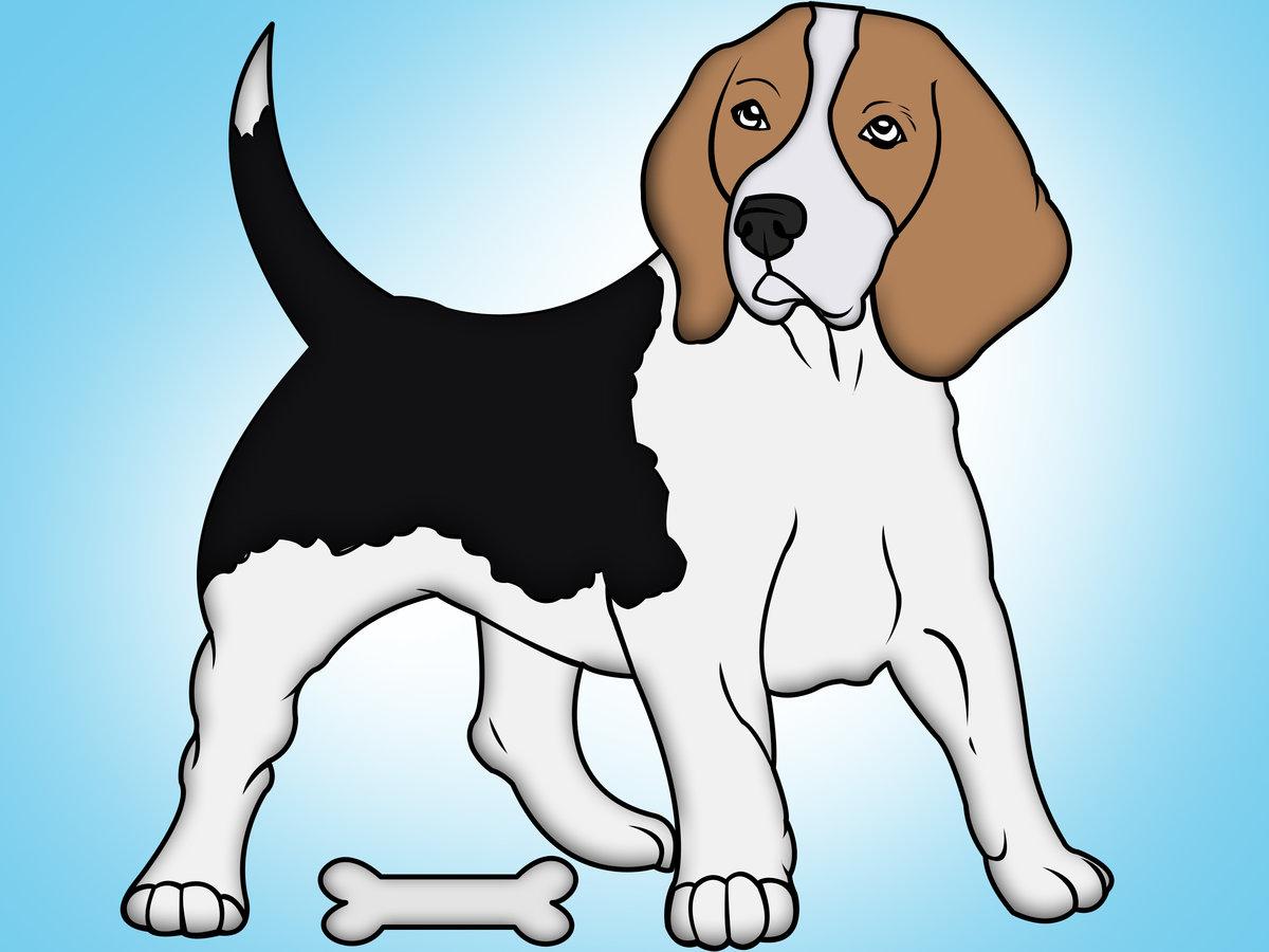 Картинка собаки для дошкольников