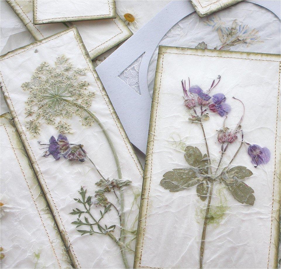 Сухоцветы на открытках, днем рождения мопсом