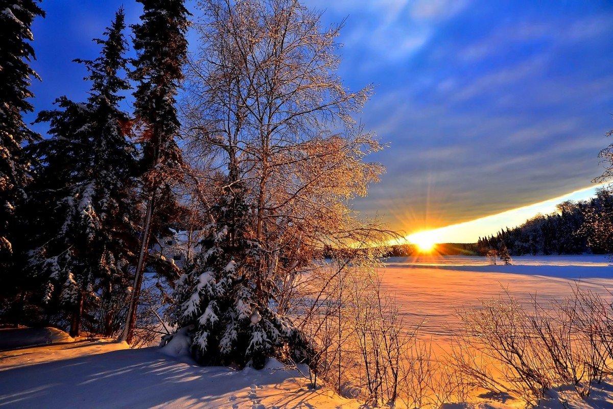 На телефон картинку пейзаж зима