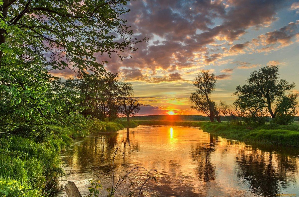 может картинки природа закаты охотно включают песни