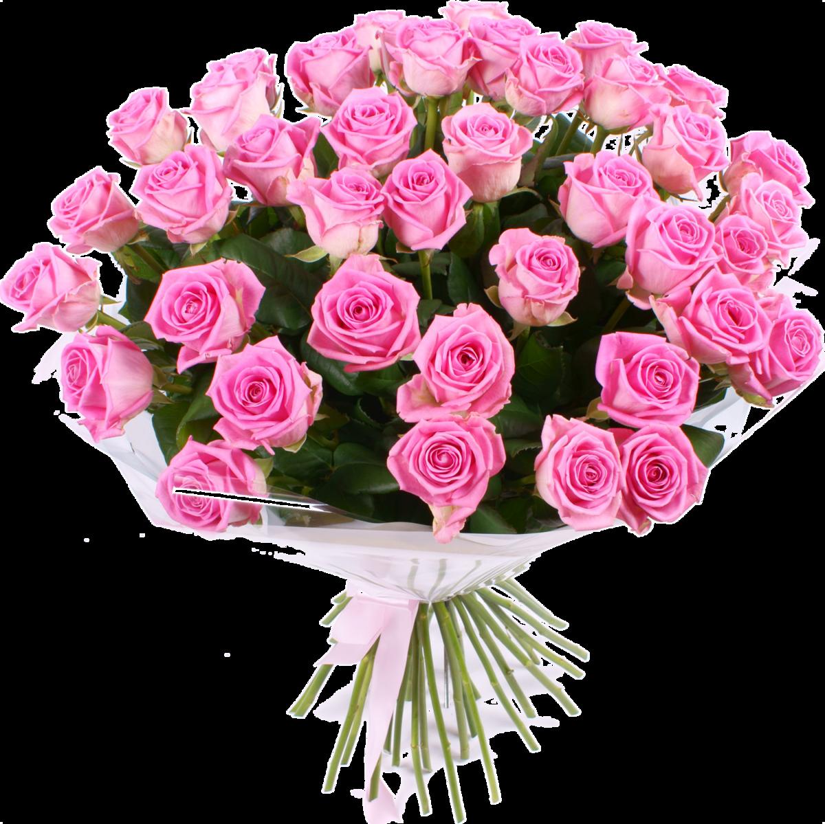 Открытка с букетом розовых роз, самоделкина мультфильма незнайка