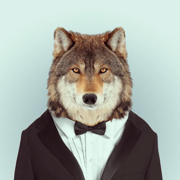 Картинки животных в одежде людей, период