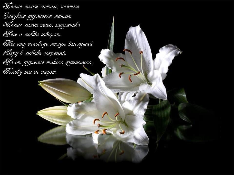 Красивые открытки для лилии