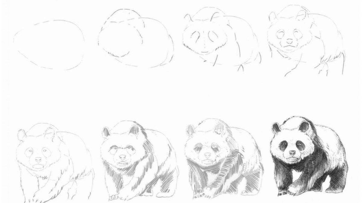 Как нарисовать картинки поэтапно карандашом легко и красиво