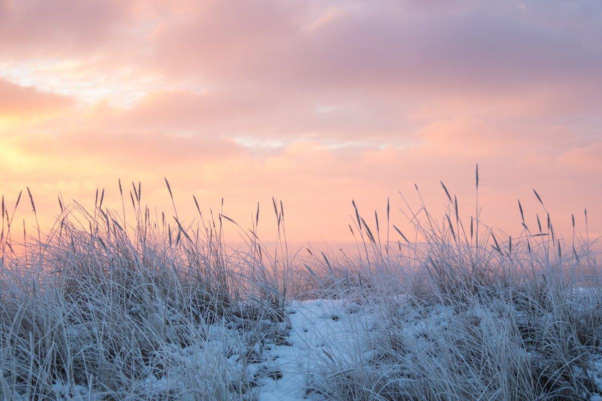 Картинка степь зимой