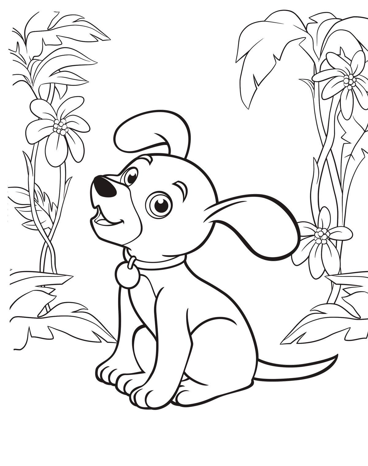 Открытка, картинки с собачками для раскрашивания распечатать