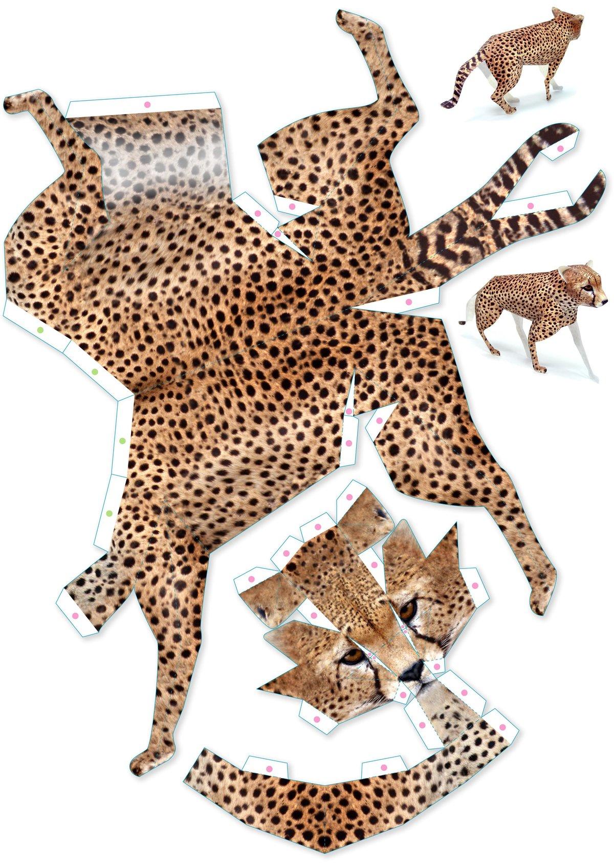 Выходных, как сделать картинки с животными
