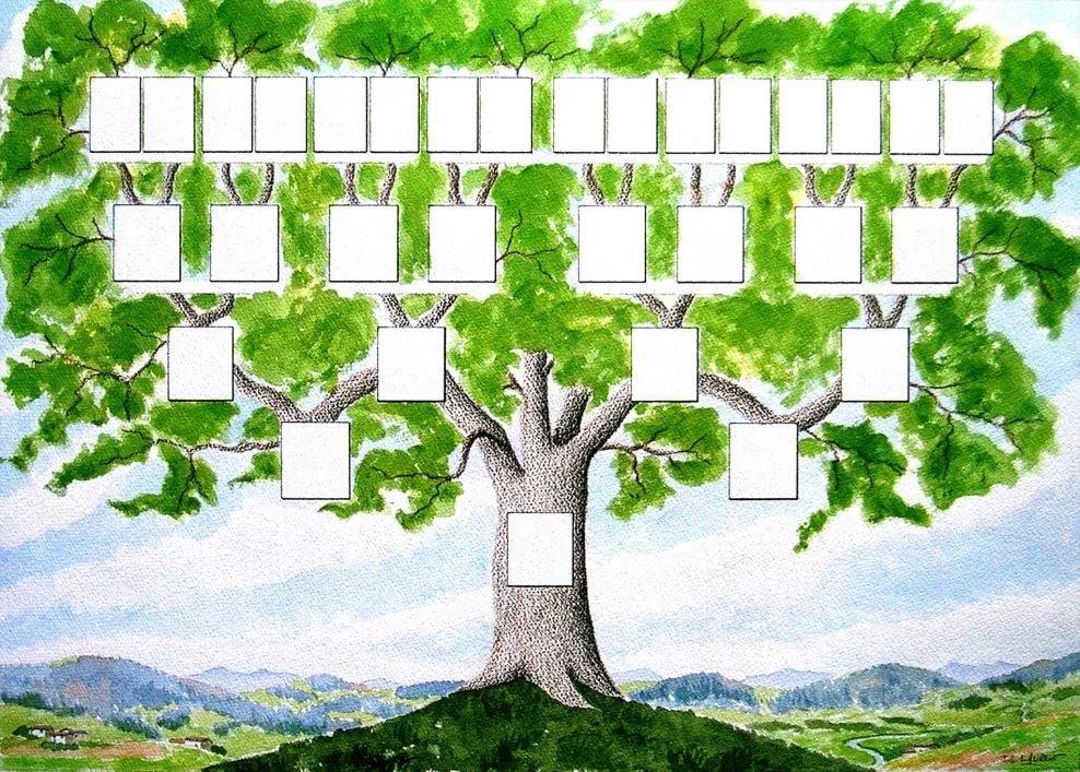 чего генеологичне дерево картинки распечатать один немалый плюс