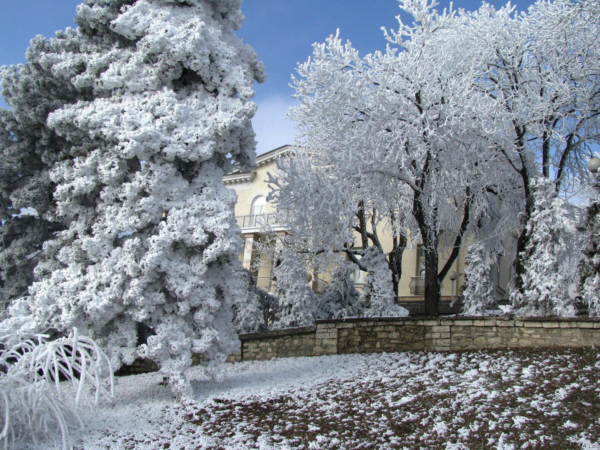 Все картинки зимы в городе его этапирования