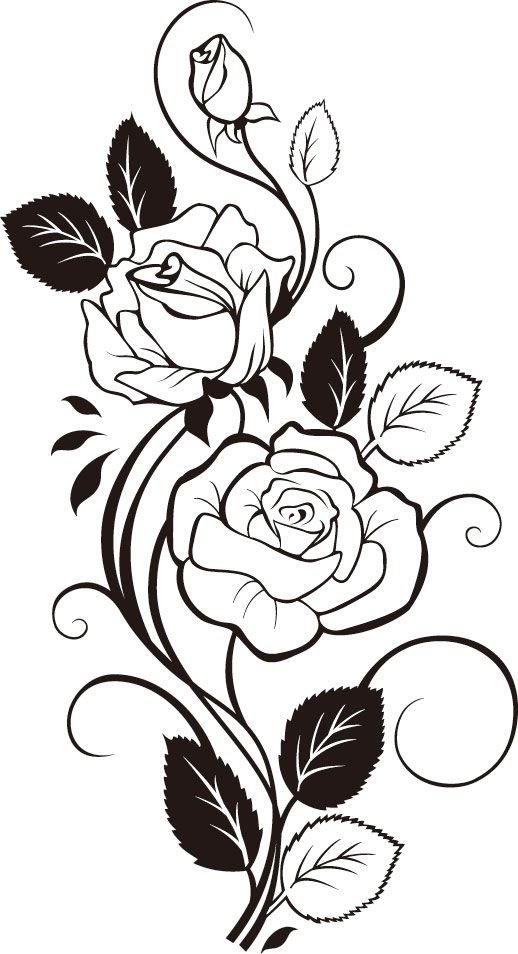 Крокодилы, картинки черно белых цветов