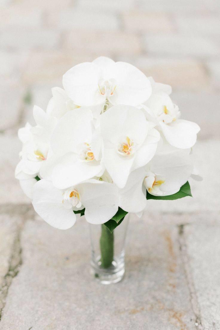 Для, букеты свадебные из орхидей