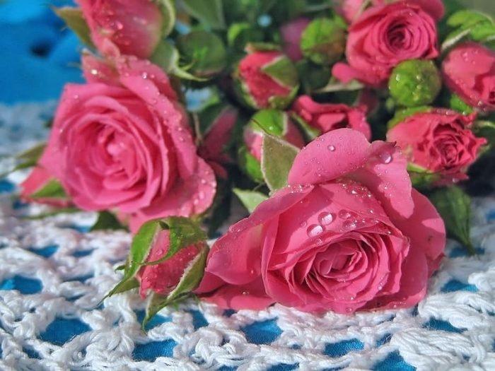 Открытка сзади, цветы для вас картинки