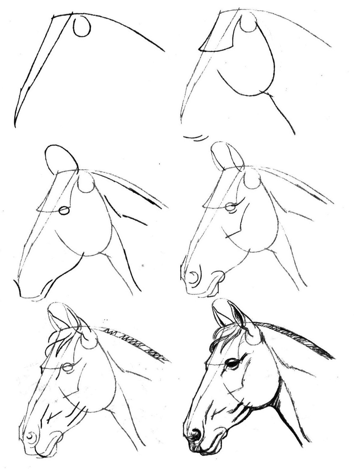 Веселые, красивые картинки рисунки карандашом для начинающих поэтапно