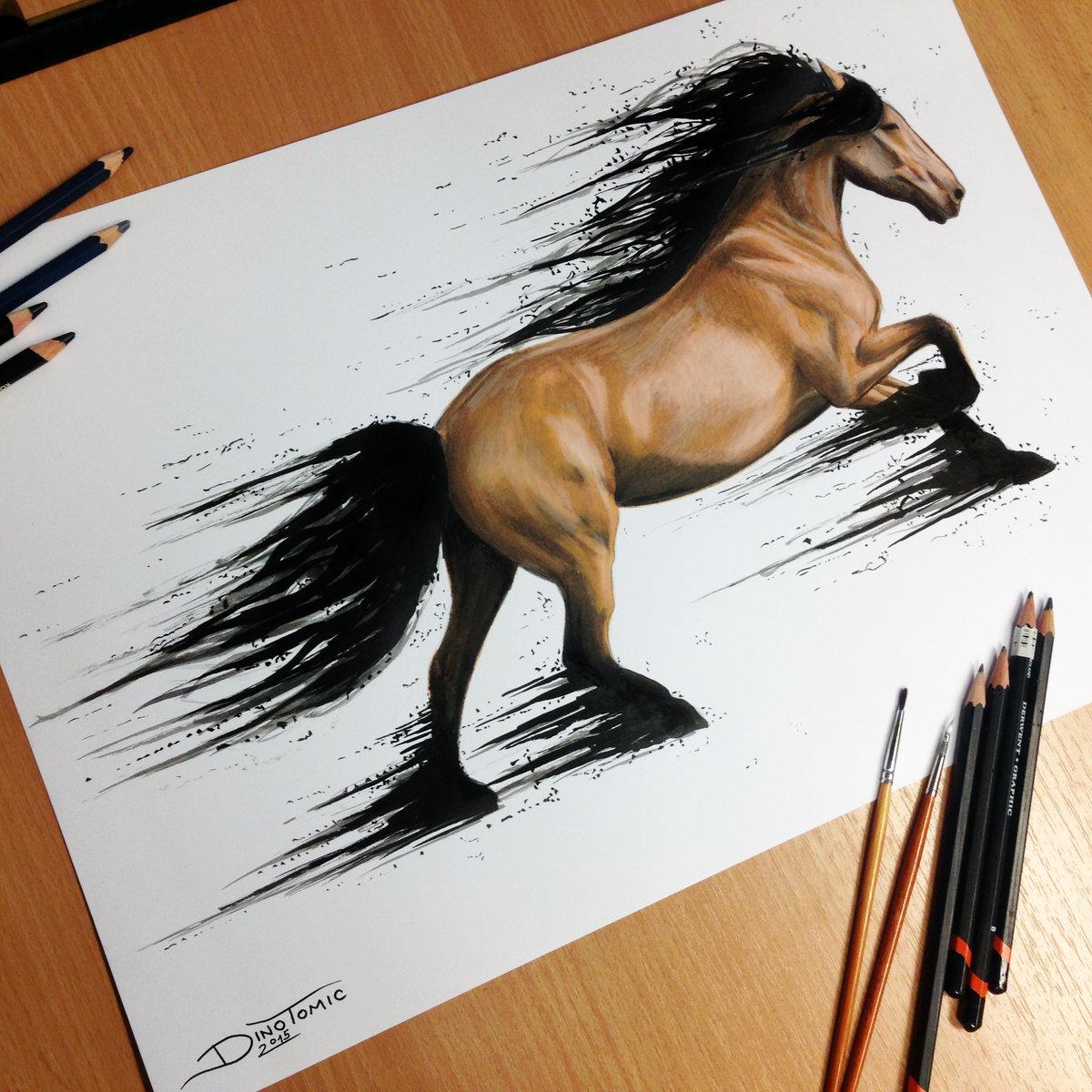 рисунки животных карандашом для начинающих художников этом сообщается