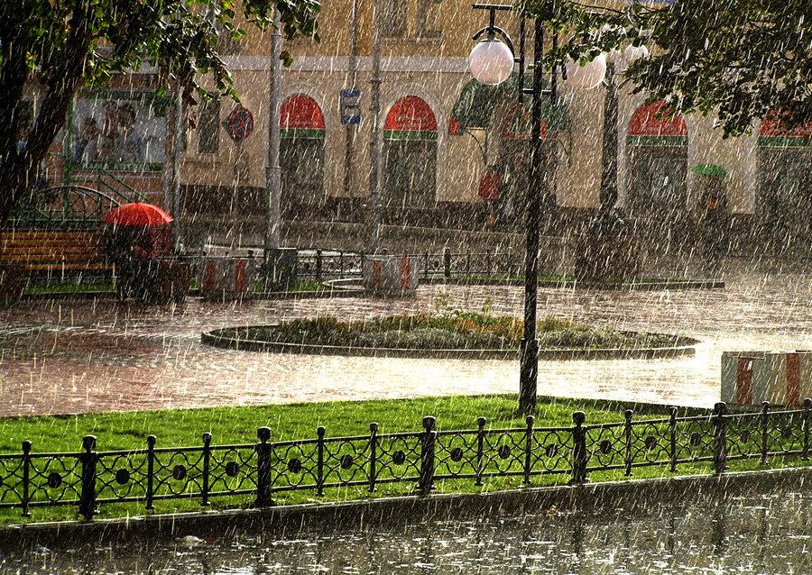 Картинки летний дождь в городе, днем рождения прабабушке