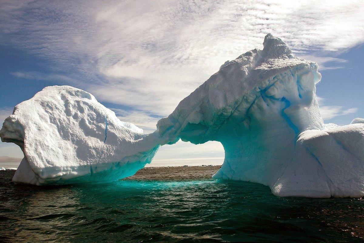 этого сорт айсберг что это такое фото если хотите