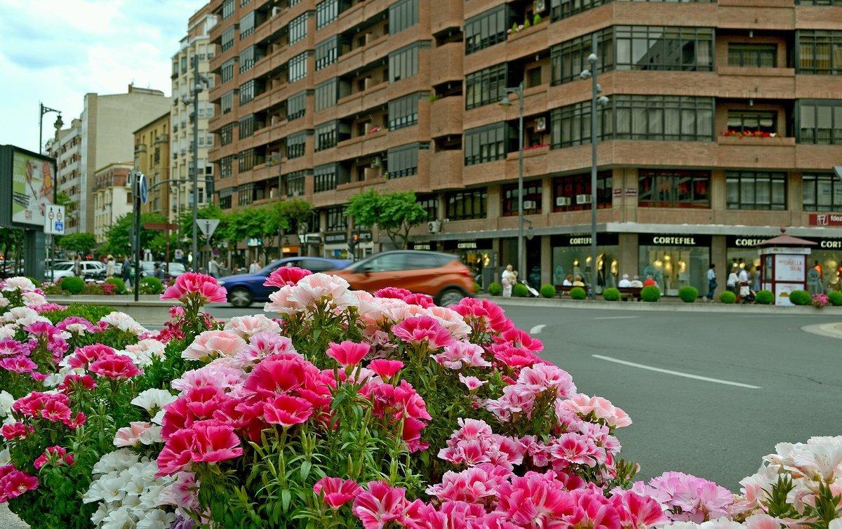 писали картинки цветы городские цветы известны