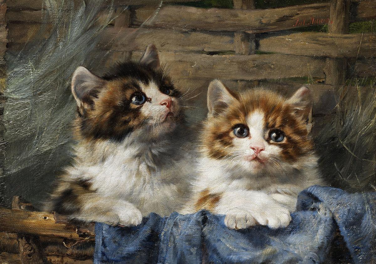 Открытка с двумя котятами