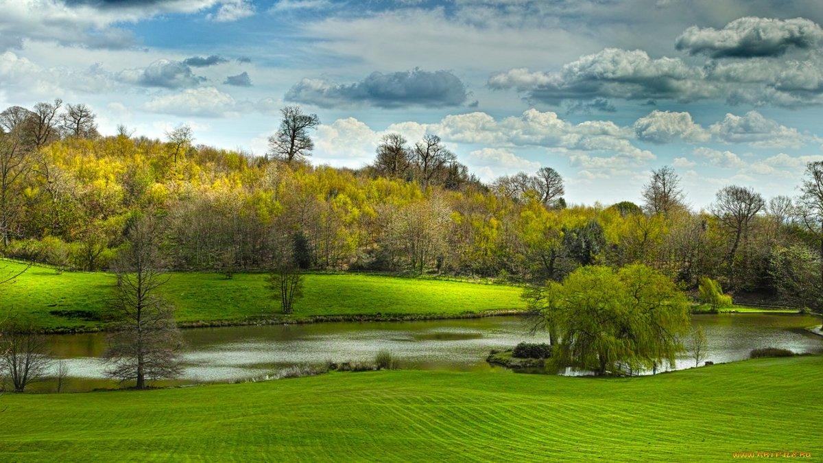 картинка озера с поляной момента его основания
