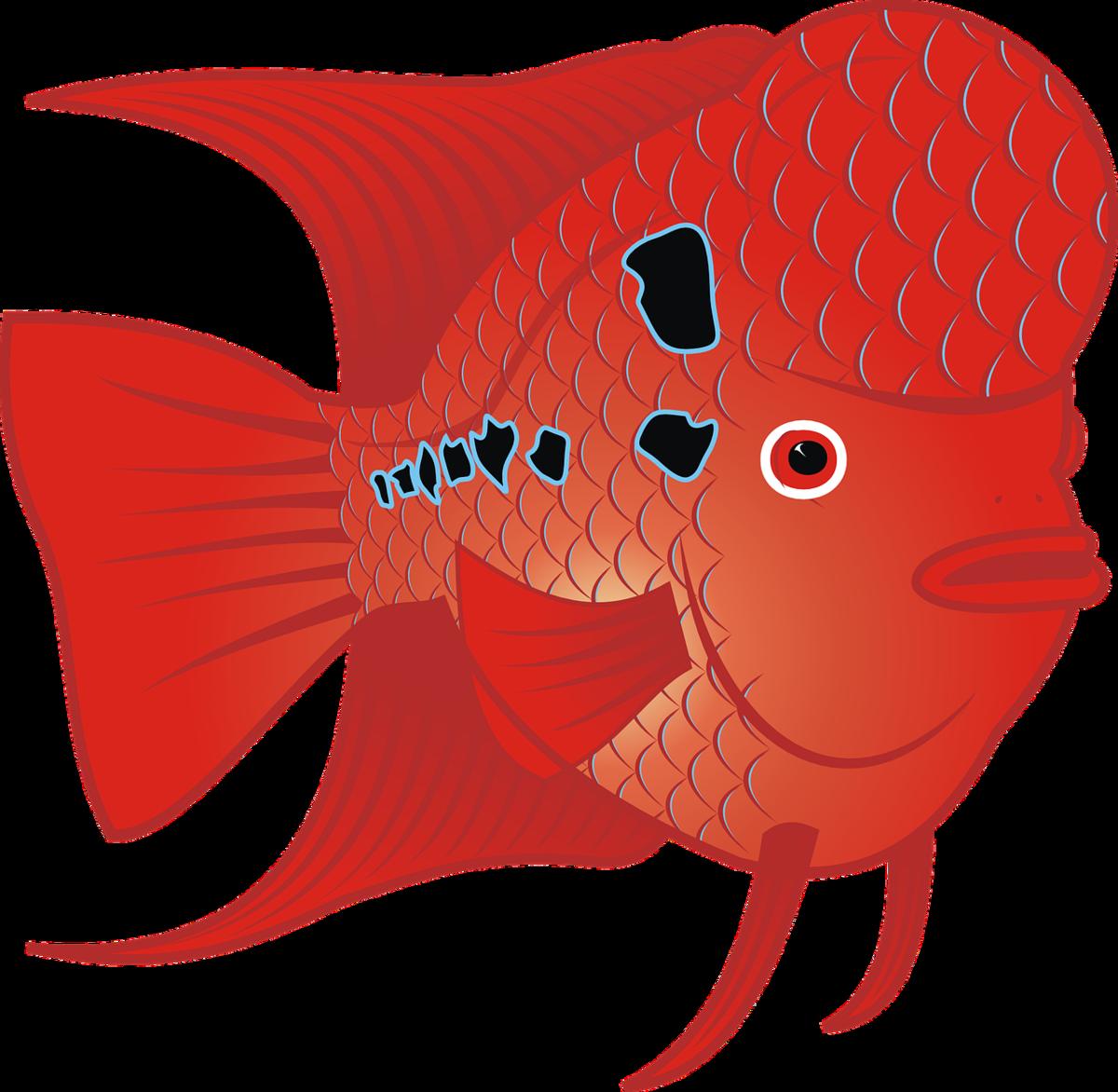 Готовая рыбка с картинками