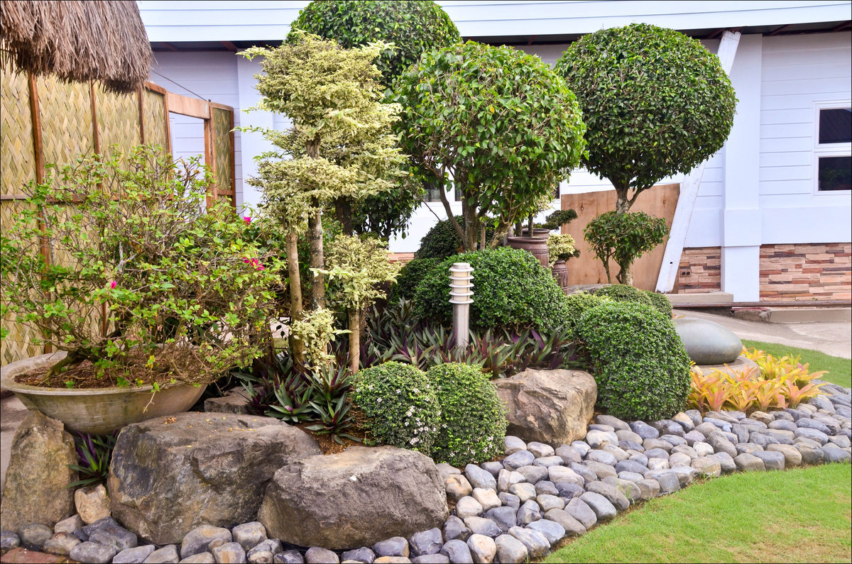оформление садовых деревьев