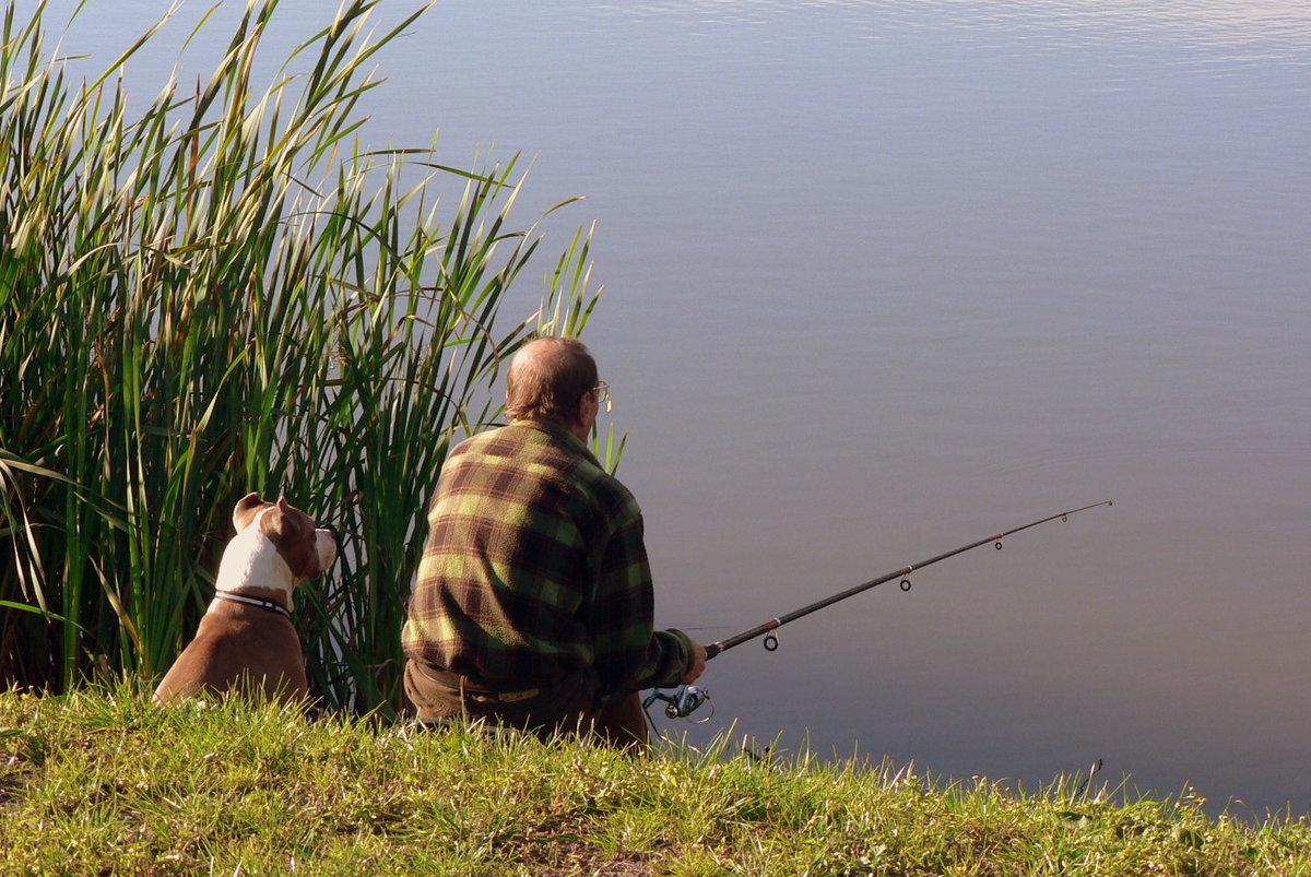 Спросите толкователя к чему снится Ловить рыбу но не поймать