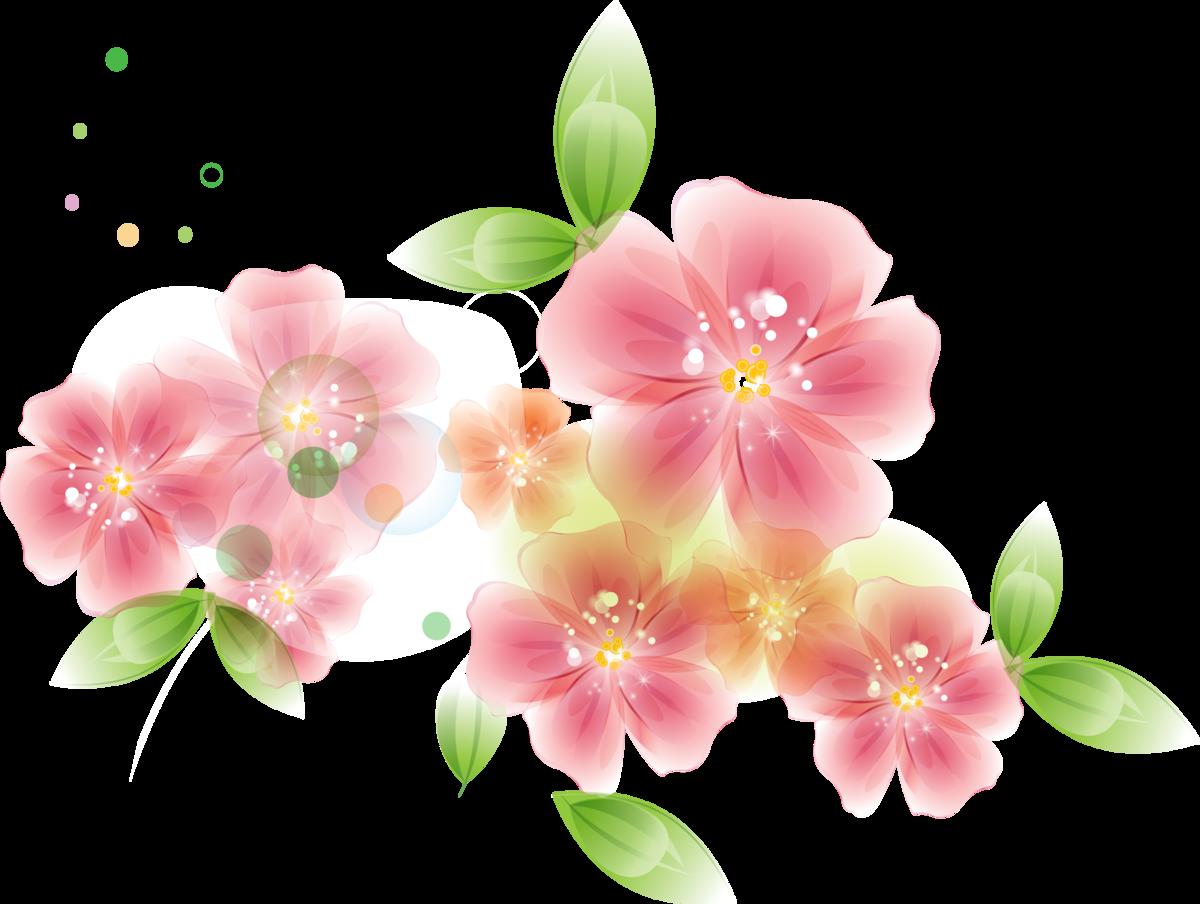 картинка цветочный фон на прозрачном фоне соседствуют