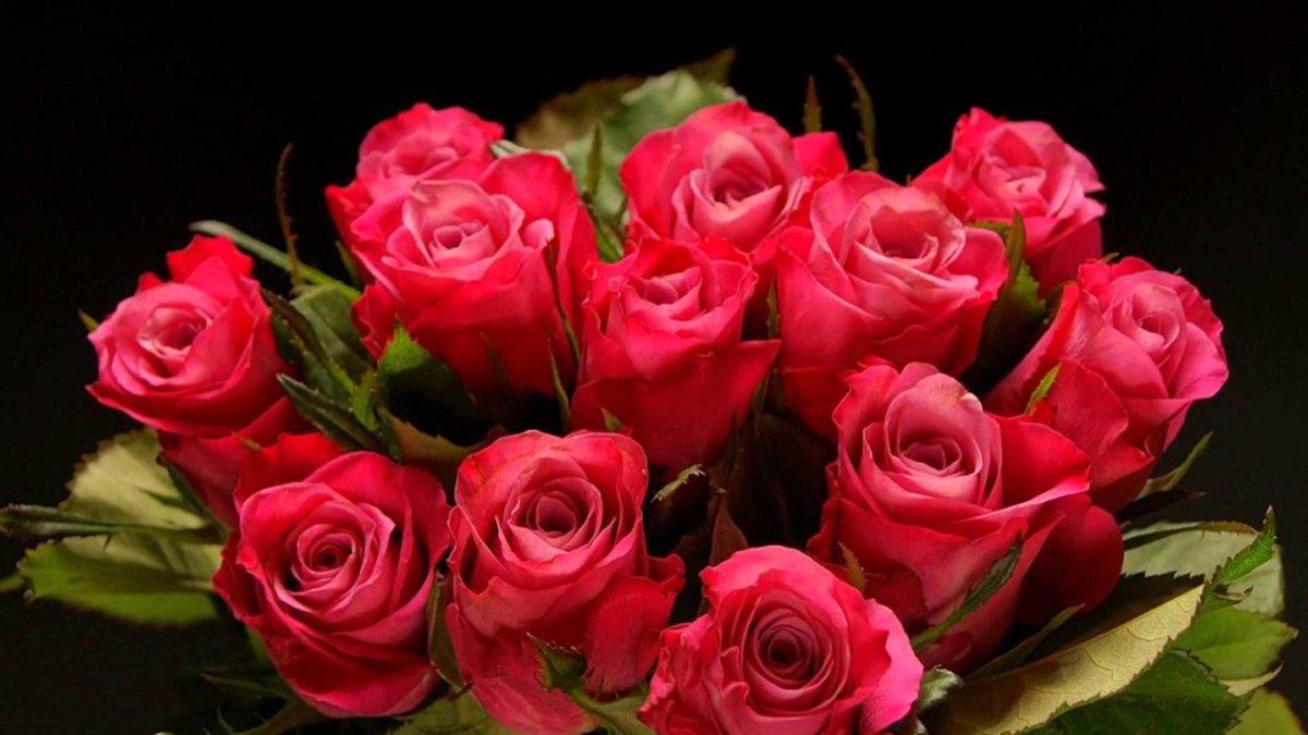 Плейкаст красивые розы открытки, днем евгений