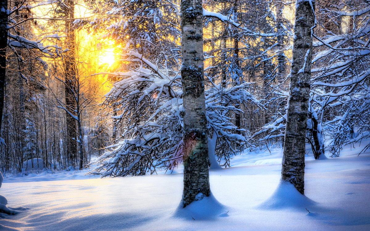 Надписи, фотографии и открытки зима