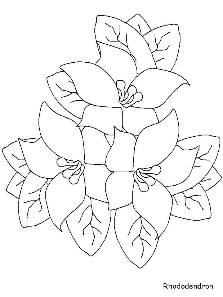 Нарисованные цветы картинки простые
