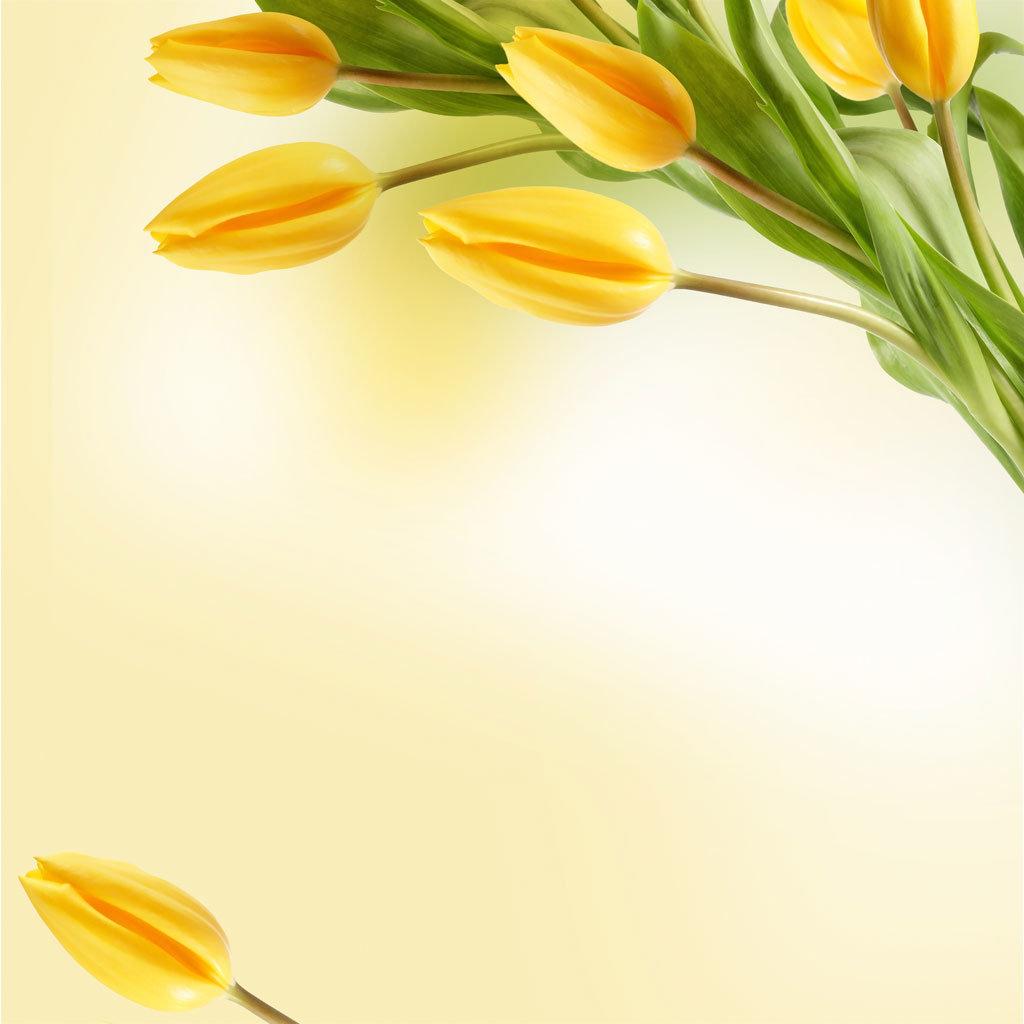 Картинки швей, шаблон для открытки на 8 марта для презентации