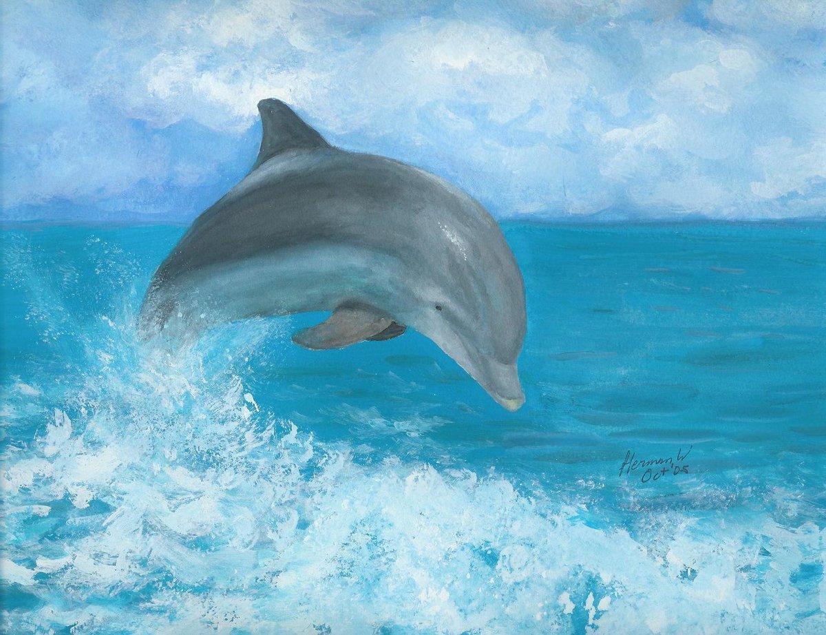 морские картинки с дельфинами