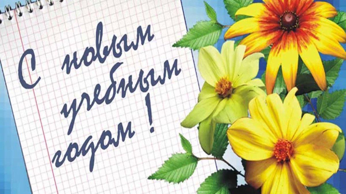 открытки с 1 сентября официальные пангасиусу подойдут
