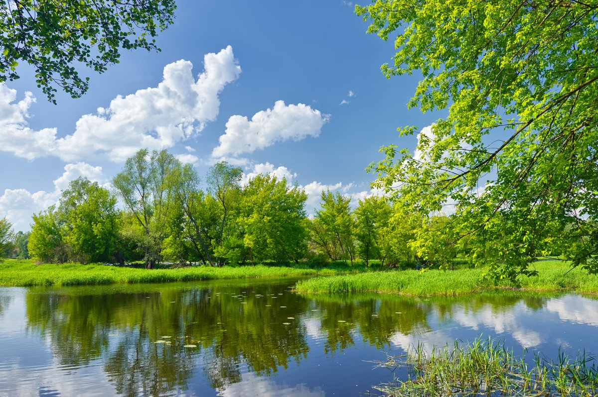 Картинки красивые небо природа зеленая деревья, парню днем