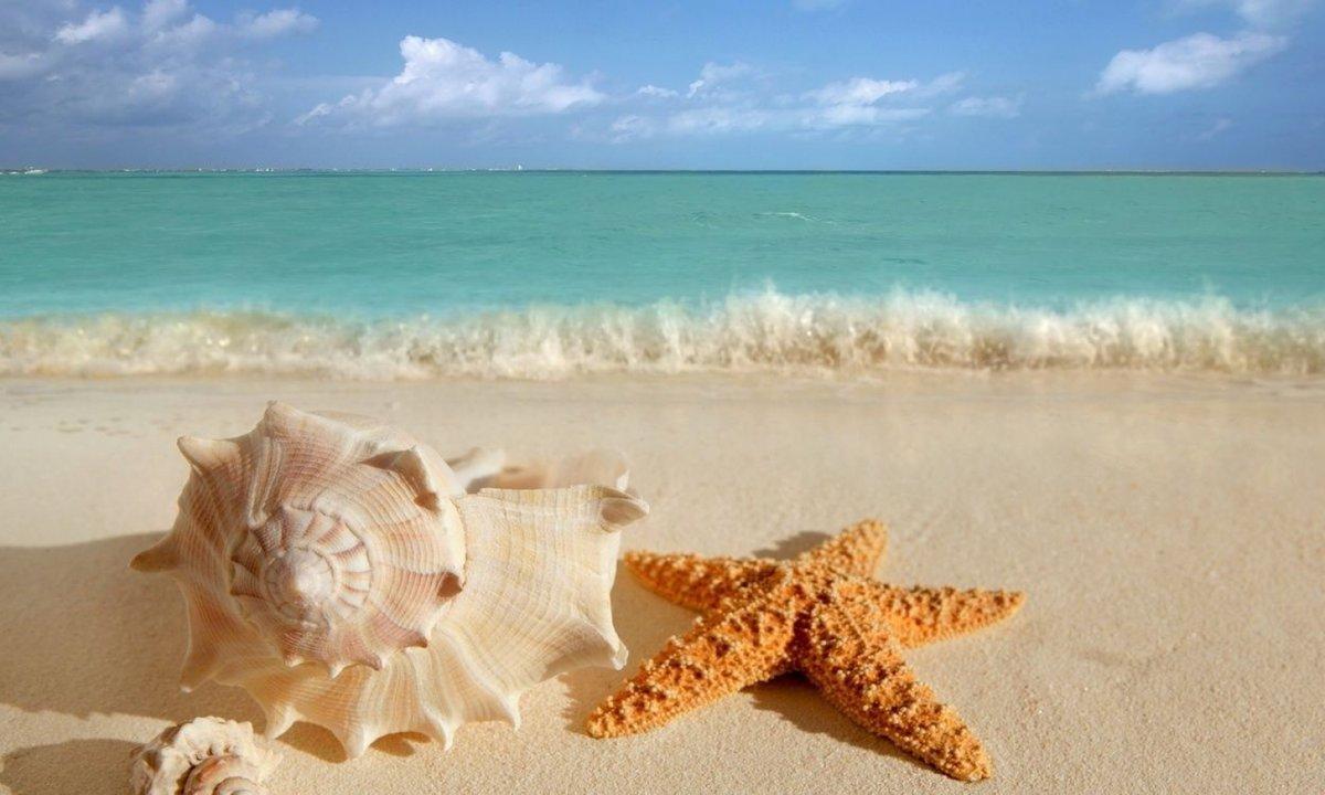 Днем николая, открытки морем