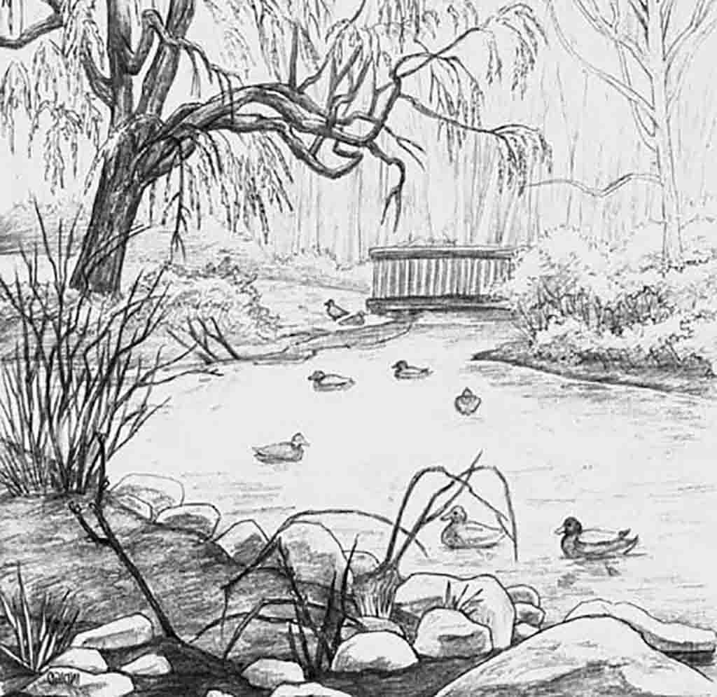 Рисуем природу с простым карандашом картинки