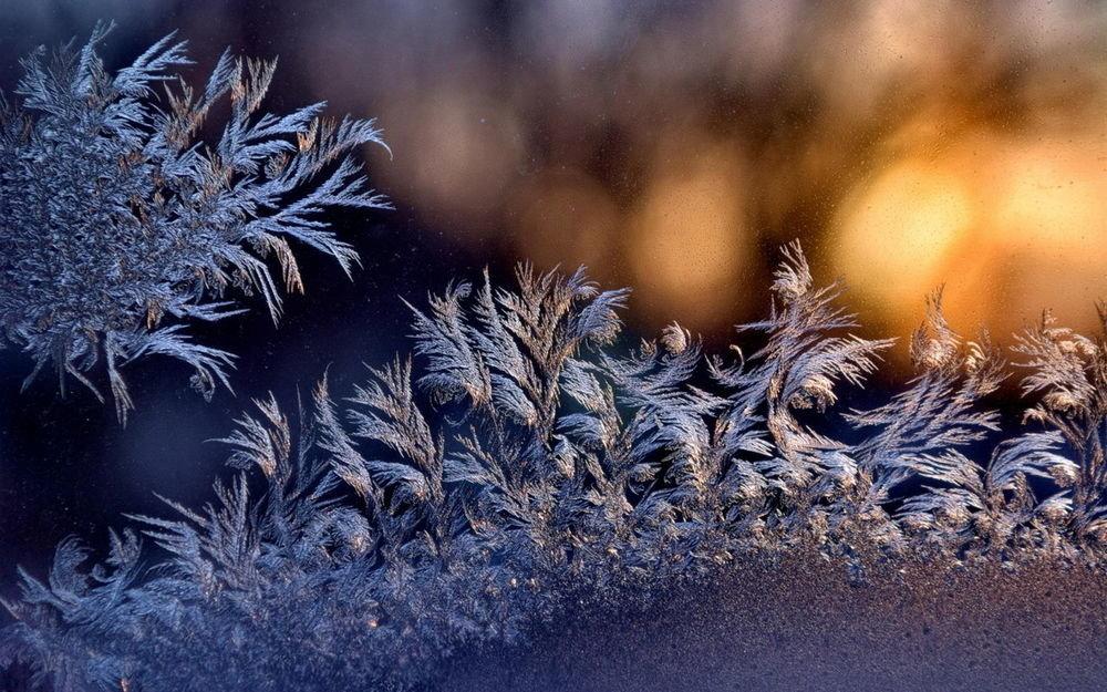 Блестящие, мороз в картинках
