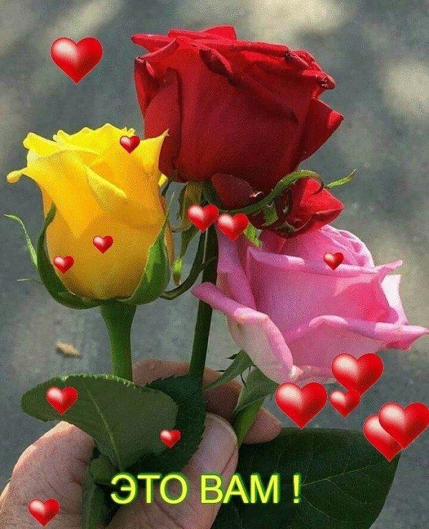 Я дарю вам розы картинки