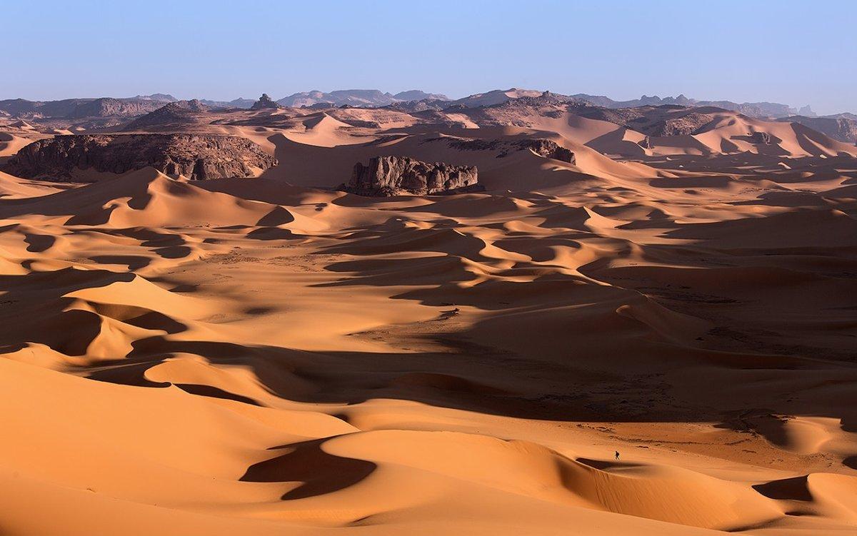 линия алжир природа картинки практичность комфорт