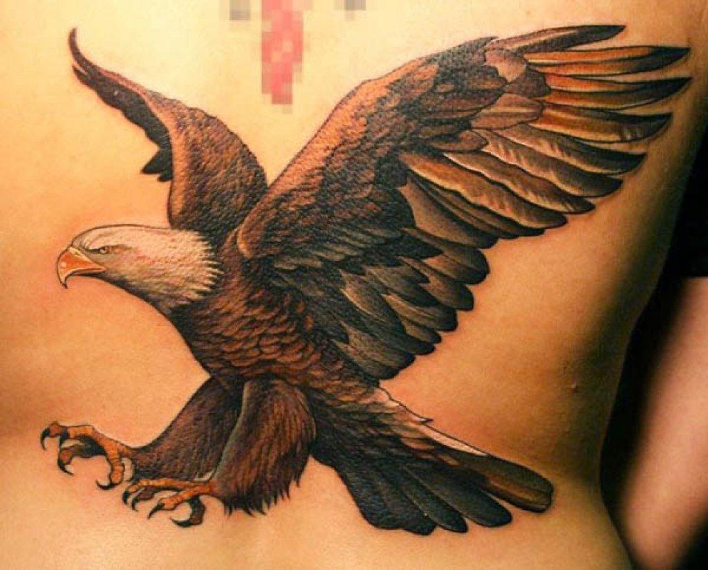 Картинки тату орла на руке