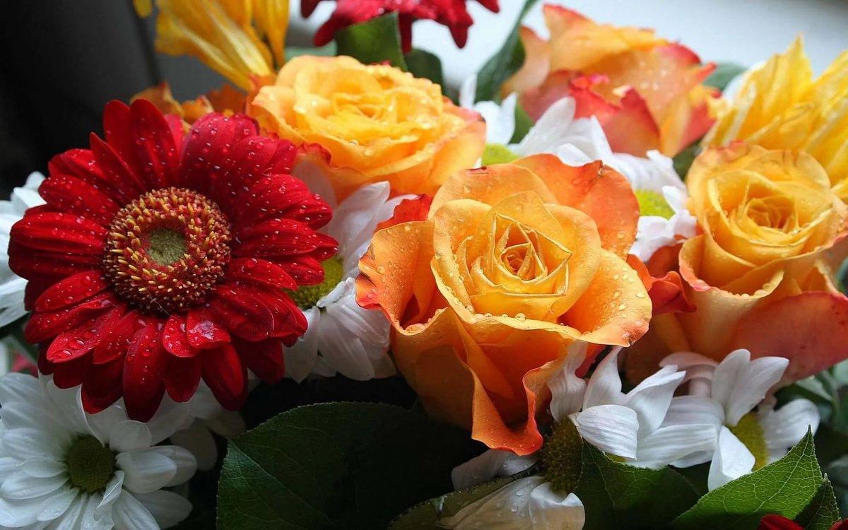 смешайте майонез красивые цветы картинки фото открытки делать, если