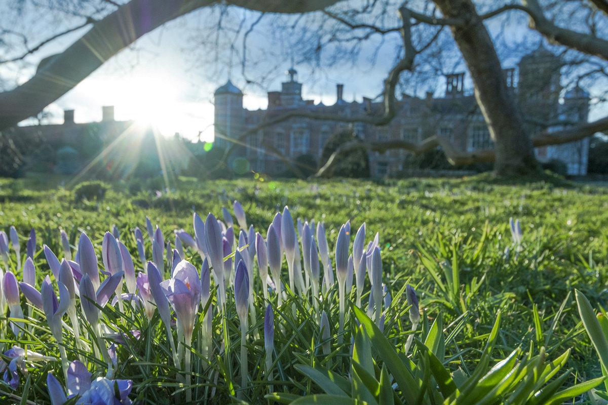 Красивые картинки весна фото природа весной
