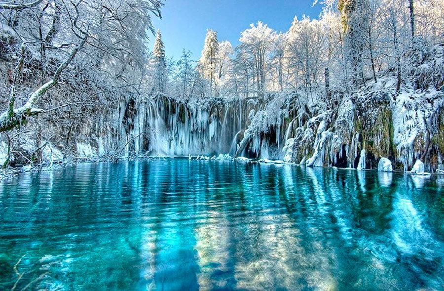 всегда вашей самые красивые картинки мира зима дополняет дерево