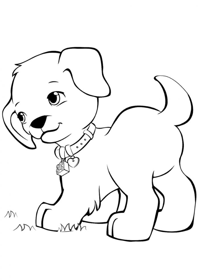собак рисунок раскраска почётный