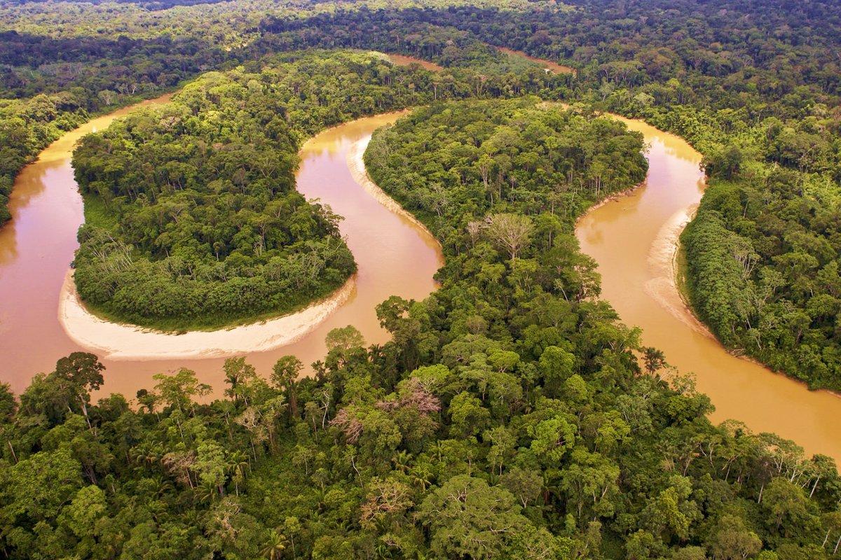картинки амазонок рек ней