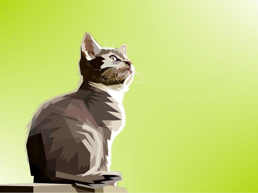 будет картинки котят которые смотрят вверх минеральных