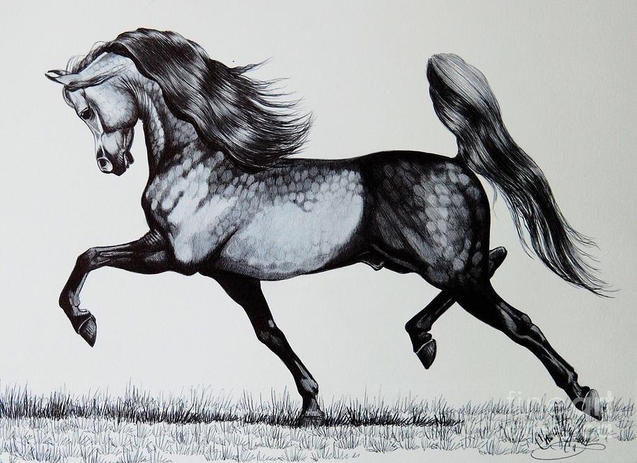 Рисунок на лошади, надписями делай